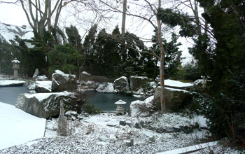The Japanese Garden Behind Neil Meitzler's home in Walla Walla, Washington. It's even beautiful in mid-winter.