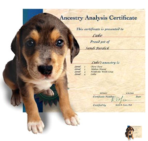 canine-ancestry
