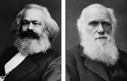 Contrasting fortunes: Karl Marx lived a largely hand-to-mouth existence in London until his death in 1883. His income came mostly in the form of handouts from his industrialist friend Friedrich Engels. He died leaving just £250 - about £9,000 in today's money. Charles Darwin was born into a wealthy and well-connected family i n 1802 and went on to lay the foundations for the theory of evolution. His estate was worth £146,911 when he passed away in 1882 - the equivalent of £13 million in 2010
