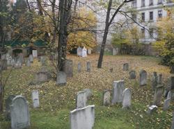 Jewish-Seegasse-Cemetery-in-Vienna