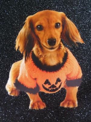 Tika Halloween