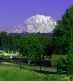 Mt. Rainier photo taken from the Footshills Trail. The Trail runs just a few hundred yards from our home in Orting.