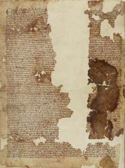 Magna-Carta-250pw