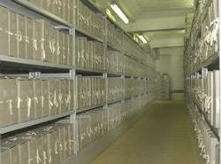 Croatian-Archives-250pw