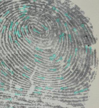 Fingerprint-200pw