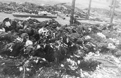 View of the charred remains of Jewish victims burned in a barn by the Germans near the Maly Trostenets concentration camp.